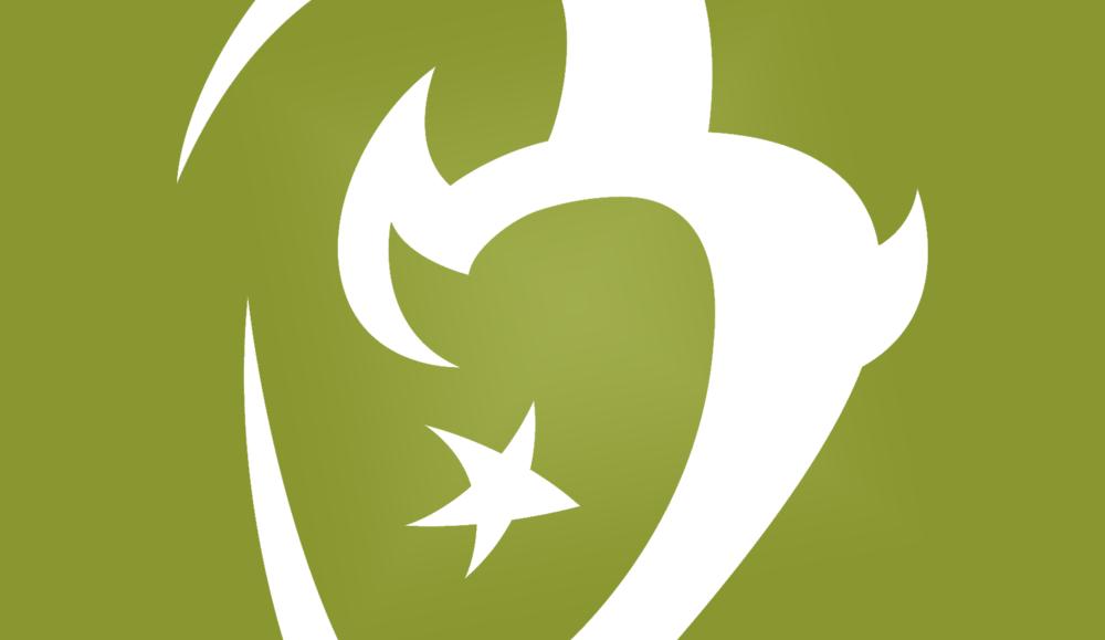 Star B Ranch San Diego Logo Design